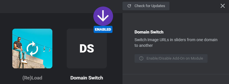 [Slider Revolution 6] The Domain Switch AddOn can be used to Switch Image URLs in sliders from one domain to another